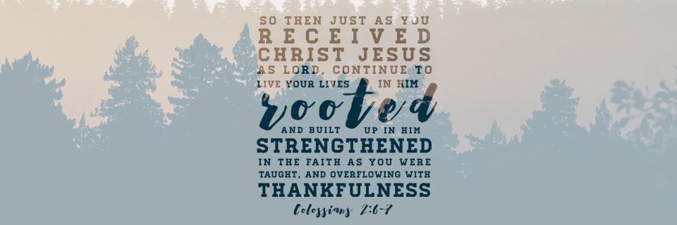 Colossians: Verse by Verse