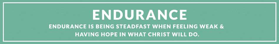 Endurance Definitions